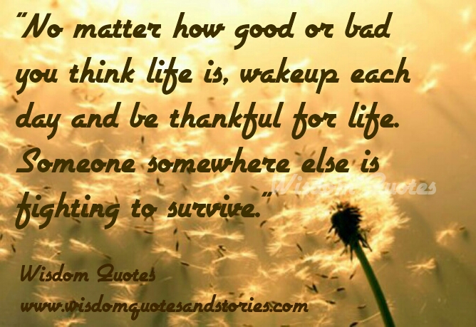 Wake Up Each Day And Be Thankful For Life   Wisdom Quotes And Stories. U201c