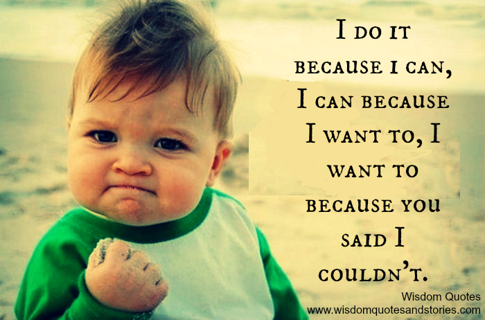 I do it because i can, I can because I want to, I want to because you said I couldn't