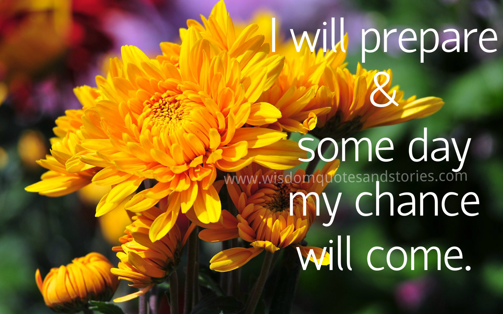 I will prepare and some day my chance will come - Wisdom Quotes and Stories