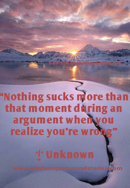 nothing sucks more than that moment when you realize you are wrong - Wisdom Quotes and Stories