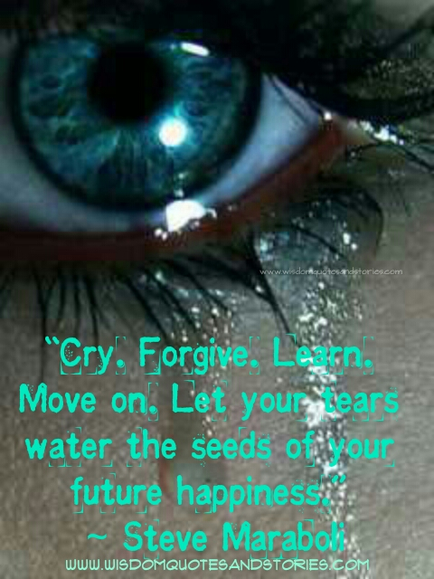 cry , forgive , learn and move on. Let your tears water the seeds of your happiness - Wisdom Quotes and Stories