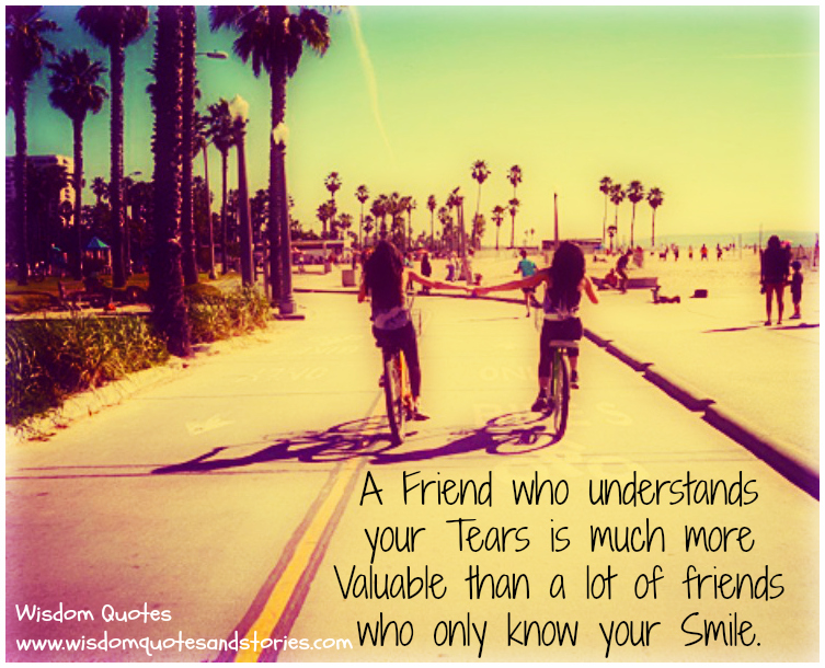A friend understanding your tears is much more valuable than one who only knows your smile
