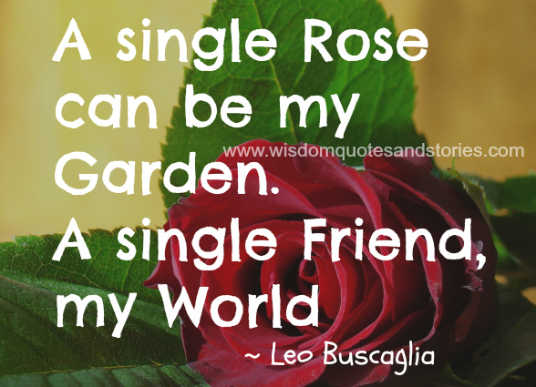 A single rose can be my garden and a single friend my World  - Wisdom Quotes and Stories