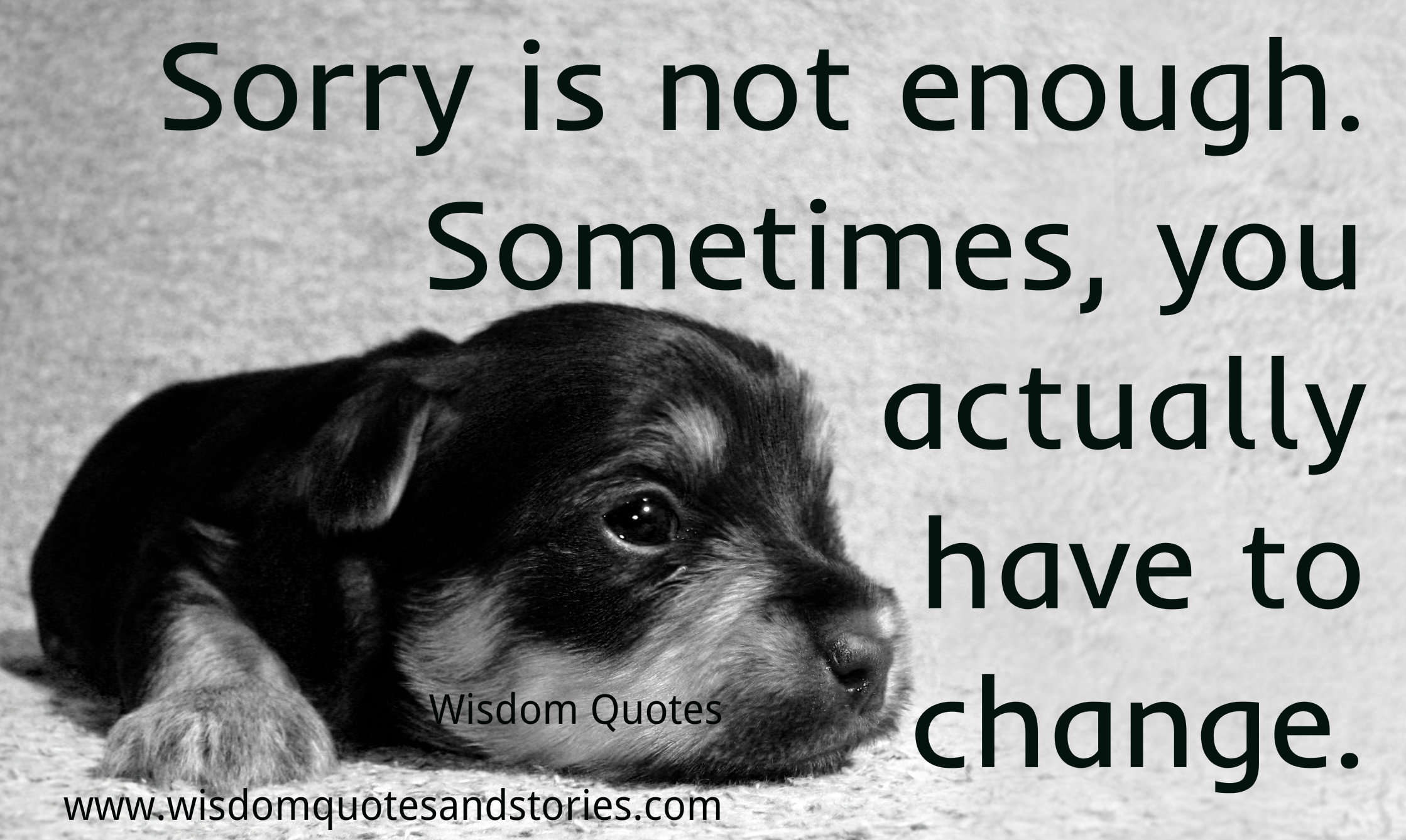 Sorry is not enough. Sometimes you have to change.
