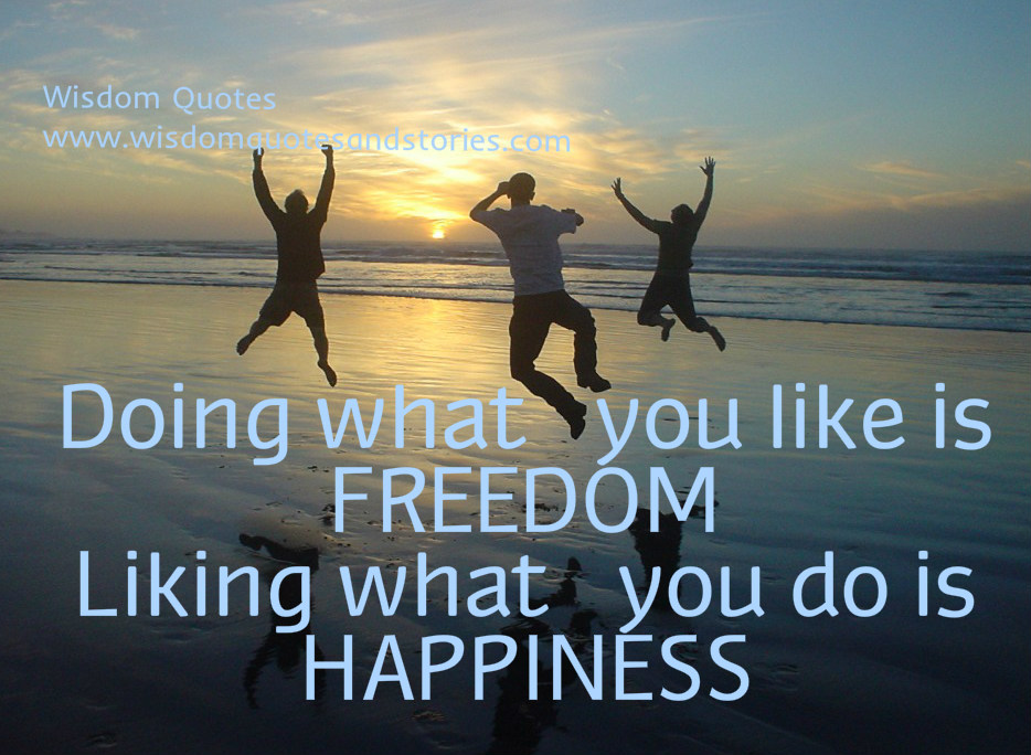 Doing what you like is freedom but liking what you do is happiness