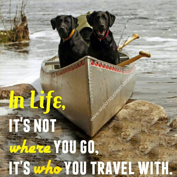 It's Important Who You Travel With Wisdom Quotes & Stories