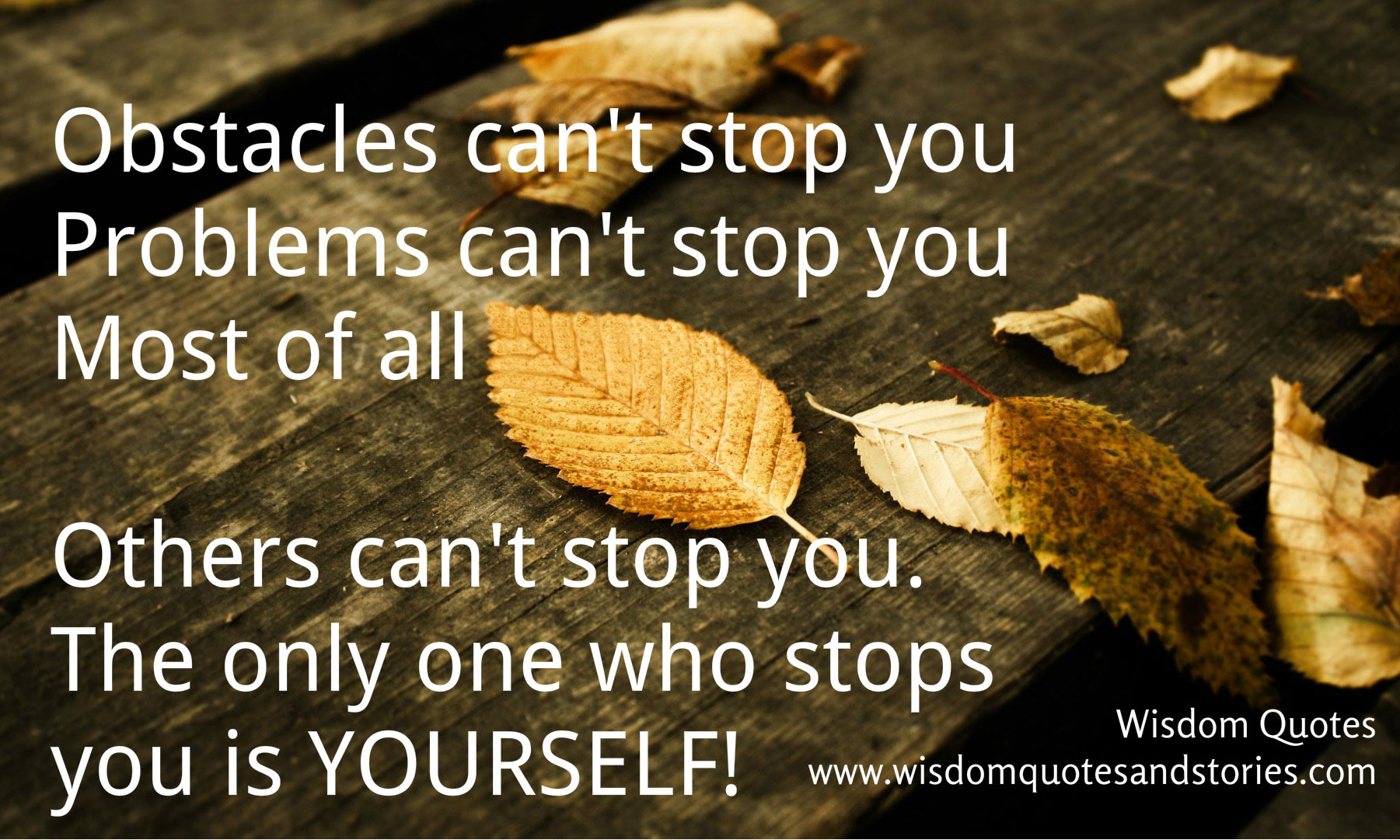 obstacles can't stop you. Only one who stops you is yourself  - Wisdom Quotes and Stories