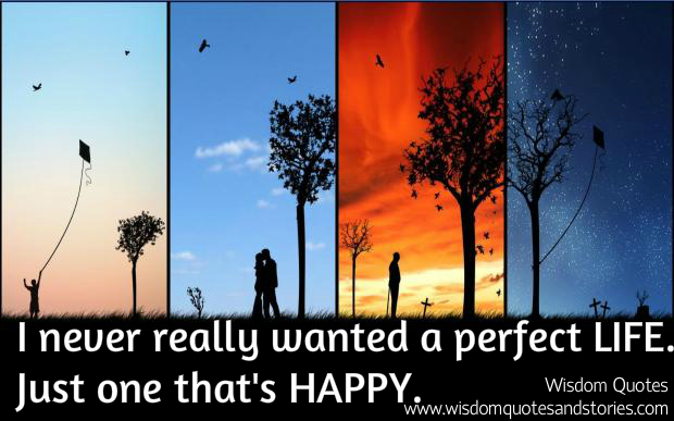 I never really wanted a perfect life , just one that is happy
