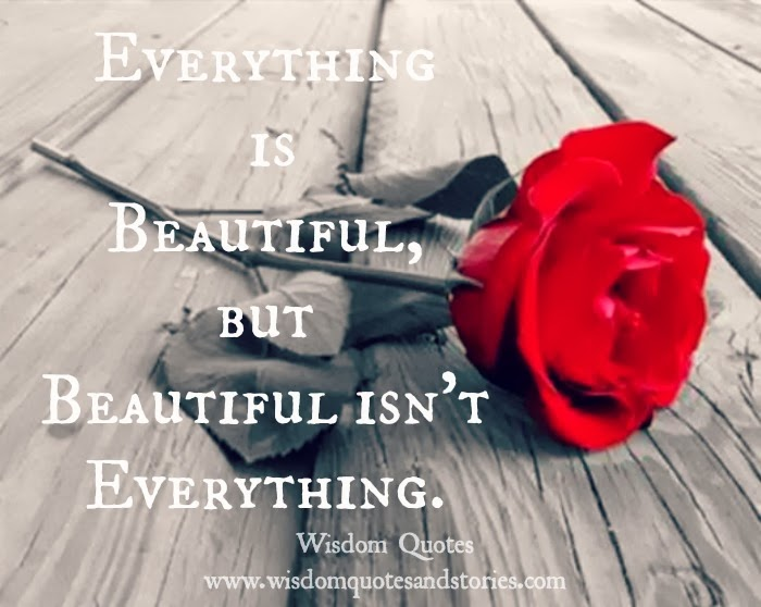 Everything is beautiful but beautiful isn't everything