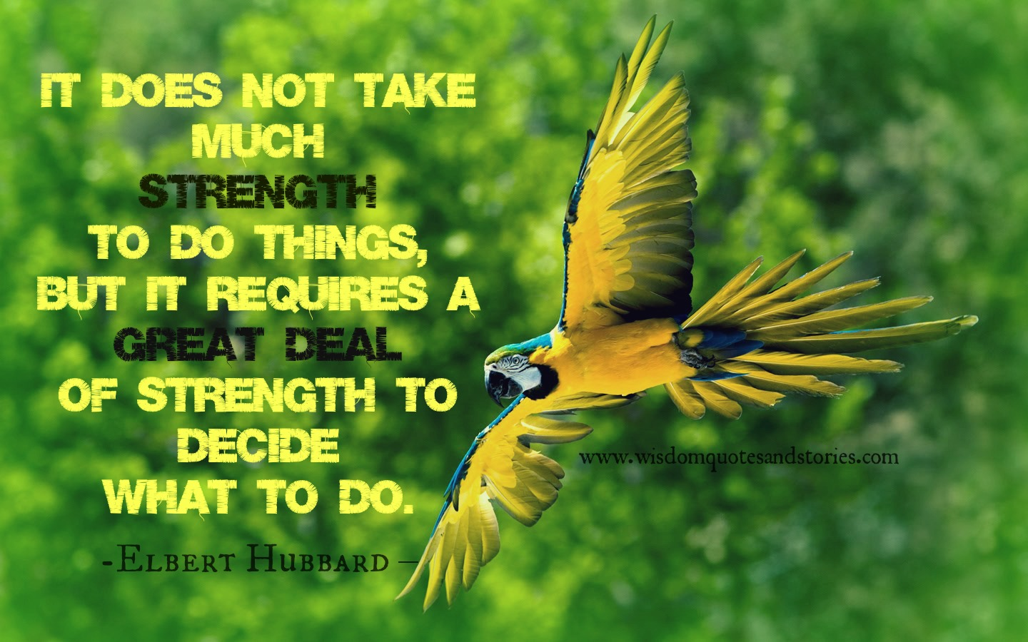 It does not take much to do things, but it requires a great strength to decide what to do. Elbert Hubbard