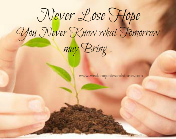 Never lose hope as you never know what tomorrow may bring  - Wisdom Quotes and Stories