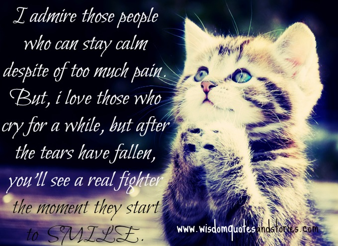 I admire people who stay calm despite too much pain. You will see a real fighter the moment they smile - Wisdom Quotes and Stories