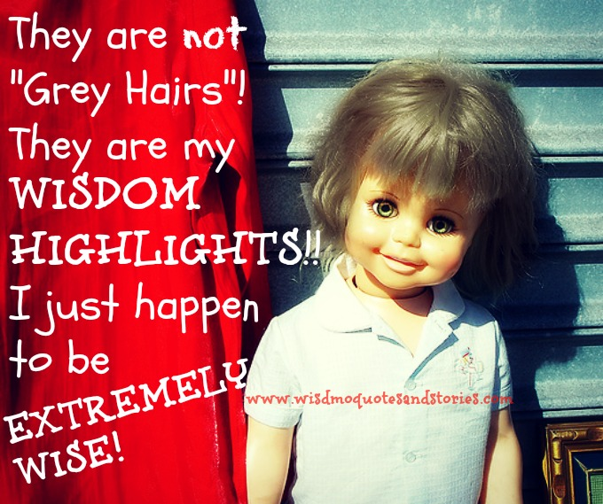 they are not grey hairs , they are my wisdom highlights - Wisdom Quotes and Stories