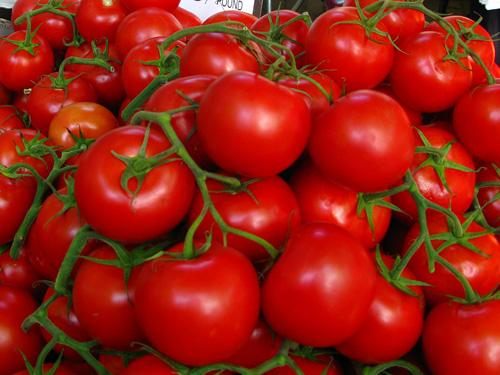 A Tomato Story