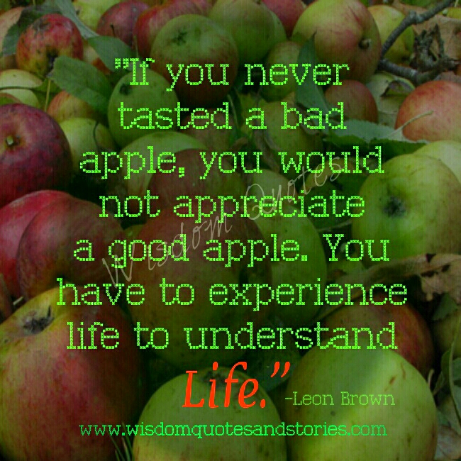 experience life to understand life - Wisdom Quotes and Stories