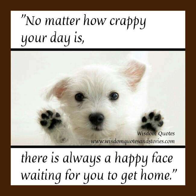 There's always a happy face waiting for you to get home   Wisdom