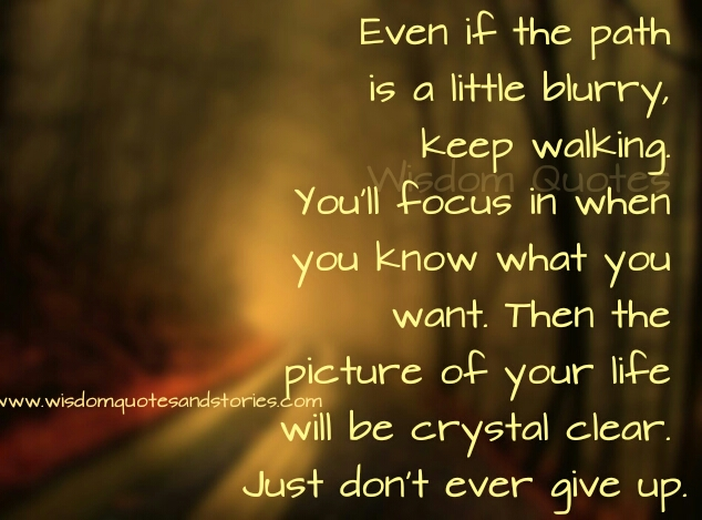 the picture of your life will become crystal clear when you just don't give up  - Wisdom Quotes and Stories