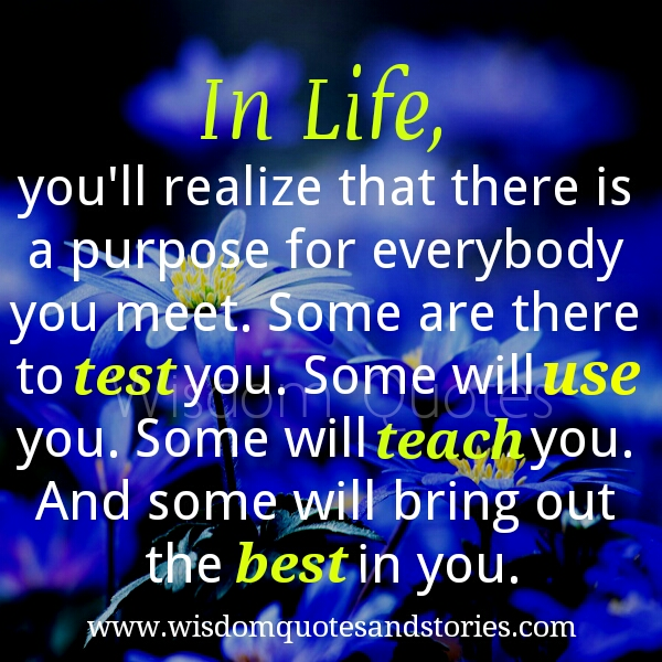 there is a purpose for everybody you meet , to test you, to use you , to teach you to bring out the best in you - Wisdom Quotes and Stories