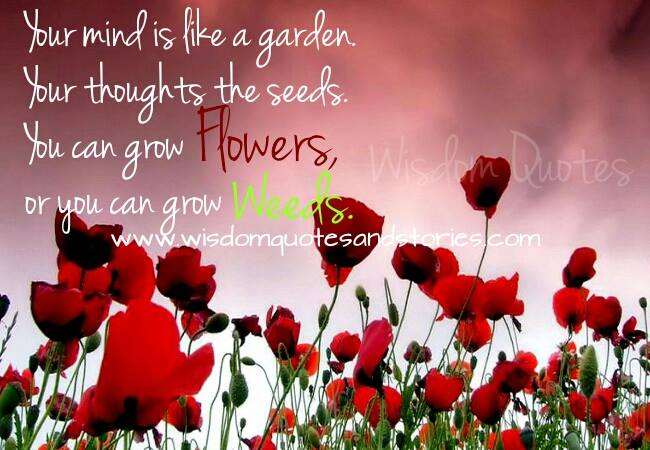 your mind is a garden and your thoughts are seeds. You can grow anything - Wisdom Quotes and Stories